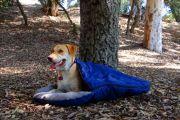 Pet Sleeping bag